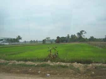 LAO14.jpg
